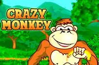Crazy Monkey в казино Вулкан
