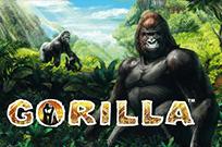 Вулкан бонусы в автоматах Gorilla