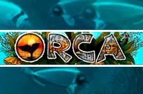Играть на деньги в автомат Orca от Вулкан