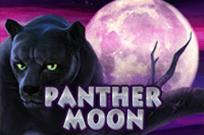 Играть на деньги в Panther Moon